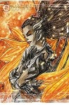 All New Soulfire Vol 6 # 8 Cover C
