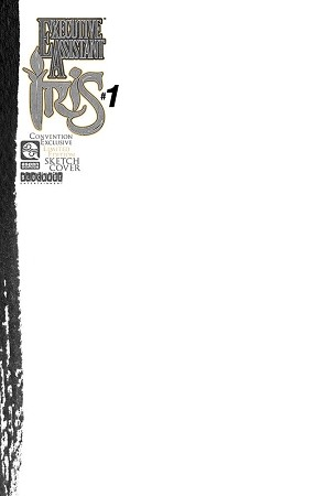Executive Assistant Iris Vol 5 # 1 Blank Sketch Cover